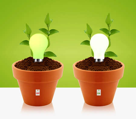 modern energy-saving concept,  bright bulb, garden pot and green leaves. photo