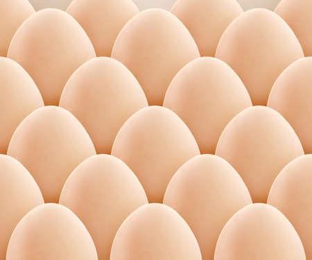 yolk: set of egg, isolated on white background. Stock Photo