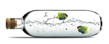 Two angelfish and water splashes inside Glass bottle with cork. photo