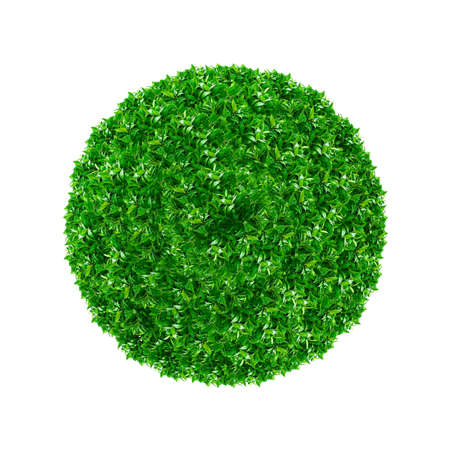 Green ball made from grass isolated on white. photo