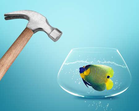 Hammer hitting fish bowl. photo