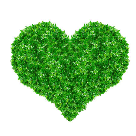 Green Heart Sign made from grass isolated on white. photo