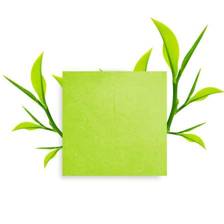 reciclaje de papel: Papel de nota verde con clip de papel y hojas verdes sobre fondo blanco.