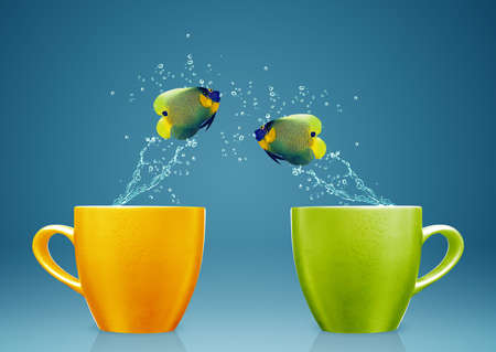 creative power: Angelfish jumping out of cup with water splashes and Acrobatic movement.