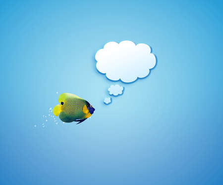 angelfish faces as social network with speech bubbles.  Stock Photo - 15787121