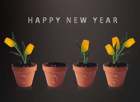 Happy new year 2013, conceptual image pots with yellow tulip flowers making 2013 year numbers. photo