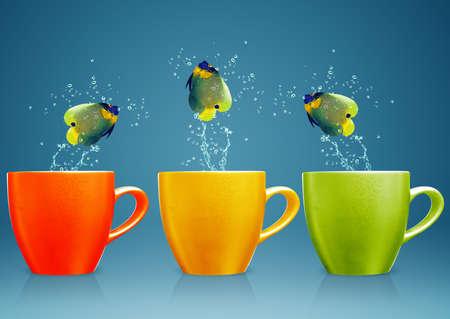 new thinking: Angelfish salta fuori coppa con spruzzi d'acqua e il movimento acrobatico.