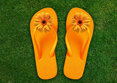 Colorful Flip Flops on green grass, summer back. photo