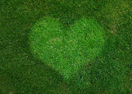 Green Heart Sign made from grass on grassland. photo