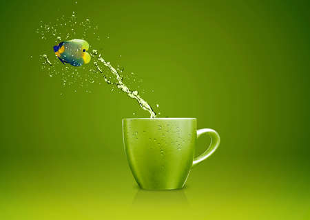 Angelfish jumping out of cup with water splashes and Acrobatic movement. Stock Photo - 16822873
