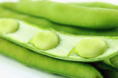 closeup of  broad bean pods and beans photo