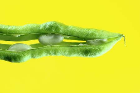 shuck: fresh beans fruit on yellow background .
