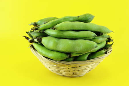 broad bean pods and beans on yellow background . photo