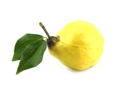 membrillo: membrillos dulces con las hojas y las rebanadas en blanco