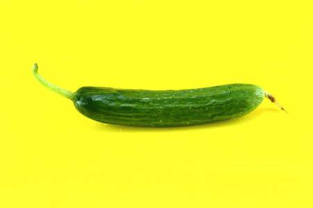 Fresh Cucumber on yellow background. Stock Photo - 19427350