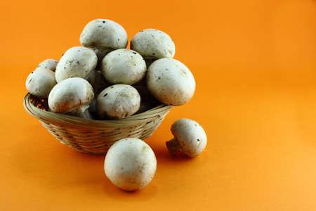 agaricus: button mushrooms in straw basket, champignons.