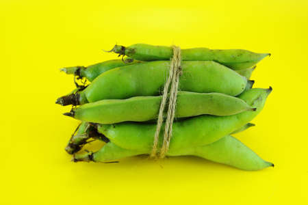 fave bean: broad bean pods and beans on yellow background .