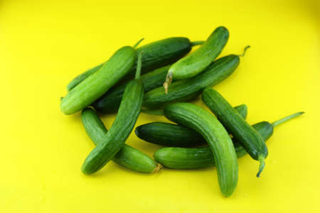 Fresh Cucumber on yellow background.  Stock Photo - 20457100
