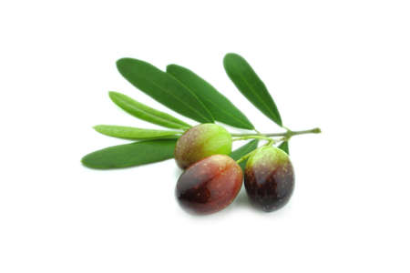 Black Olives with leaves on a white background Stock Photo