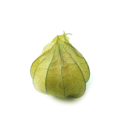 physalis: Cape gooseberry, physalis isolated on white background.  (with clipping work path)
