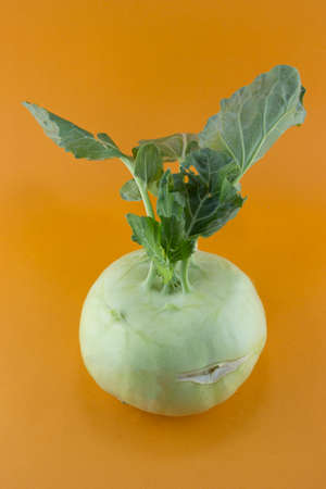 Cabbage kohlrabi on orange background  photo