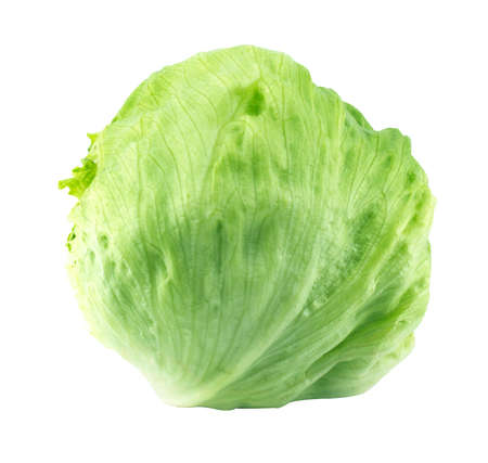 Fresh Green Iceberg lettuce . (with clipping work path)