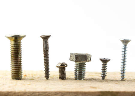 screw heads: Screws in a piece of wood.