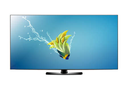 Black LCD tv screen and fish with water splash .  (with clipping work path) Stock Photo