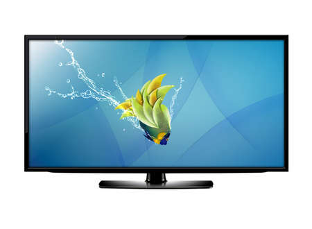 flat panel monitor: Black LCD tv screen and fish with water splash .  (with clipping work path) Stock Photo