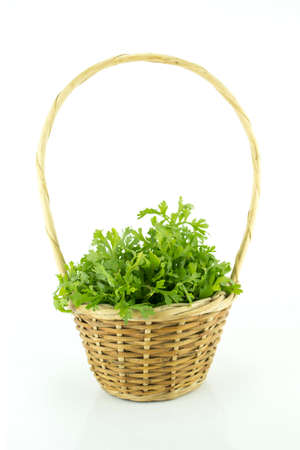 a bunch of cress on a white background