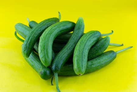 Fresh Cucumber on yellow background.  photo