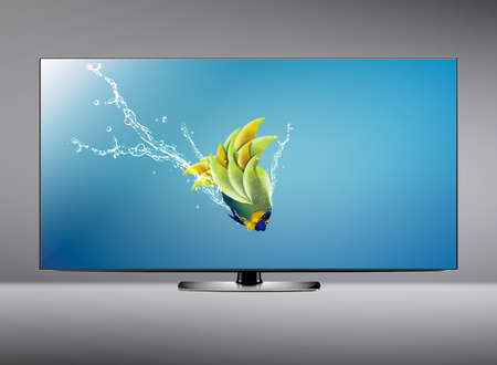 lcd tv: Black LCD tv screen and fish with water splash .  (with clipping work path) Stock Photo