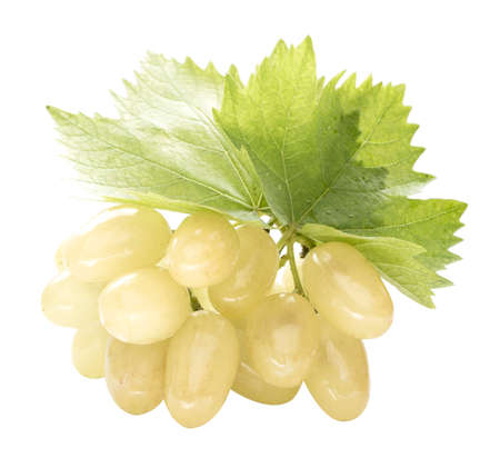 Ripe grapes with leaf, isolated on white background.    photo