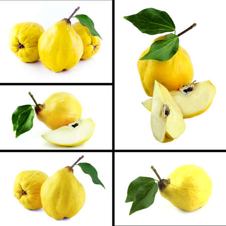 Healthy and organic food, Set of fresh sweet quinces . photo