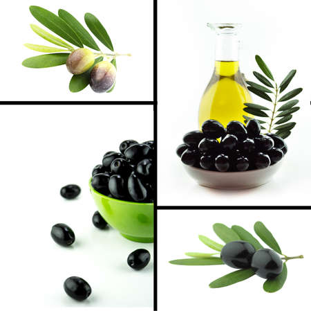 olive farm: Healthy and organic food, Set of fresh black and green olive. Stock Photo