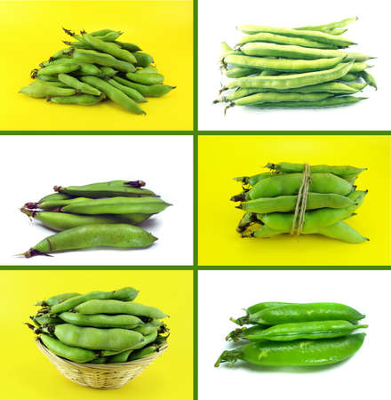 broad: Healthy and organic food, Set of fresh broad bean pods and beans. Stock Photo