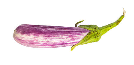 Eggplant isolated on white. photo