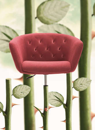 heed: Red Chair with rose stem and thorn.