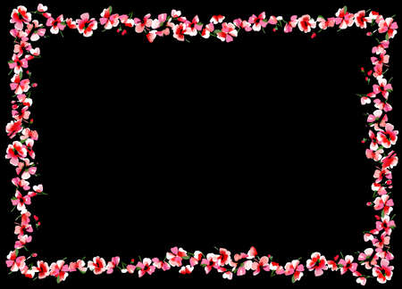 Pink Red Flowers on Black Background