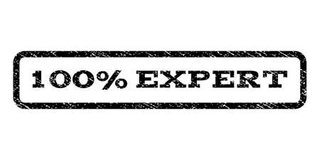 fully: 100 Percent Expert watermark stamp. Text tag inside rounded rectangle with grunge design style. Rubber seal stamp with scratched texture. Vector black ink imprint on a white background. Illustration