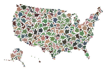 Mosaic map of USA territories composed with colored flat pebbles. Vector pied geographic abstraction of map of USA territories.