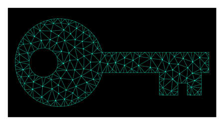 Polygonal mesh key. Abstract lines, triangles and points combined into key. Wire frame 2D polygonal line network in vector format on a dark blue background.