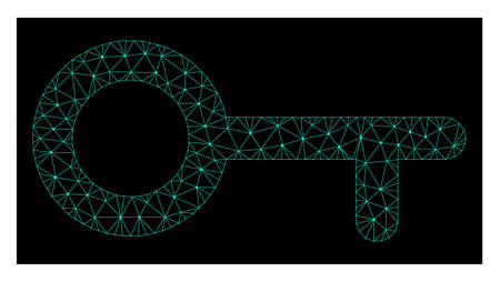Polygonal mesh key. Abstract lines, triangles and points organized into key. Wire frame 2D polygonal line network in vector format on a dark blue background. Illustration
