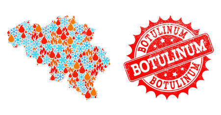 Composition of winter and flame map of Belgium and Botulinum grunge stamp seal. Mosaic vector map of Belgium is created with winter and flame symbols. Botulinum stamp has red color,