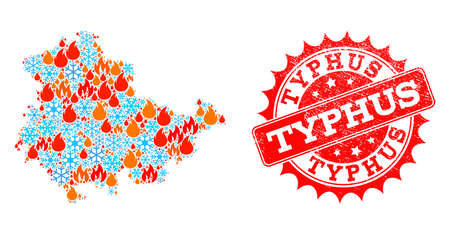 Composition of winter and fire map of Thuringia State and Typhus grunge stamp seal. Mosaic vector map of Thuringia State is formed with frost and fire symbols. Typhus stamp has red color,