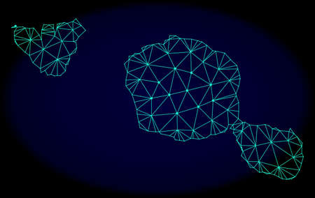Polygonal vector mesh map of Tahiti and Moorea islands. Connected lines, triangles and points forms abstract map of Tahiti and Moorea islands.  イラスト・ベクター素材
