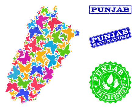 Ecological combination of bright mosaic map of Punjab Province and rubber seal stamps with Nature Reserve text. Mosaic map of Punjab Province designed with bright colored butterflies. Çizim
