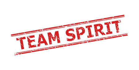 Red TEAM SPIRIT seal stamp on a white background. Flat vector distress seal stamp with TEAM SPIRIT title inside double parallel lines. Watermark with distress surface.