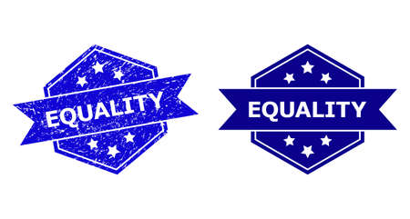 Hexagonal EQUALITY seal stamp on a white background, with original variant. Flat vector blue textured seal stamp with EQUALITY title inside hexagoanl shape, ribbon is used. Çizim