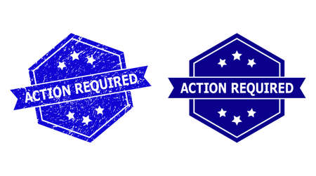 Hexagon ACTION REQUIRED stamp on a white background, with source variant. Flat vector blue scratched stamp with ACTION REQUIRED text inside hexagon form, ribbon is used also.